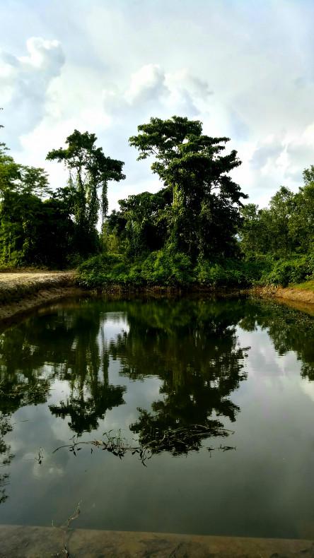 Basundhara Park Siliguri - Best view of the park